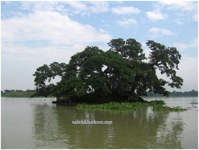 Photo of বিরুলিয়ার বটতলীতে