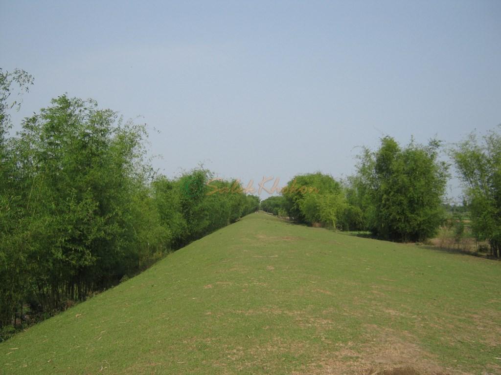 Photo of পথ গেছে ভিতরগড়