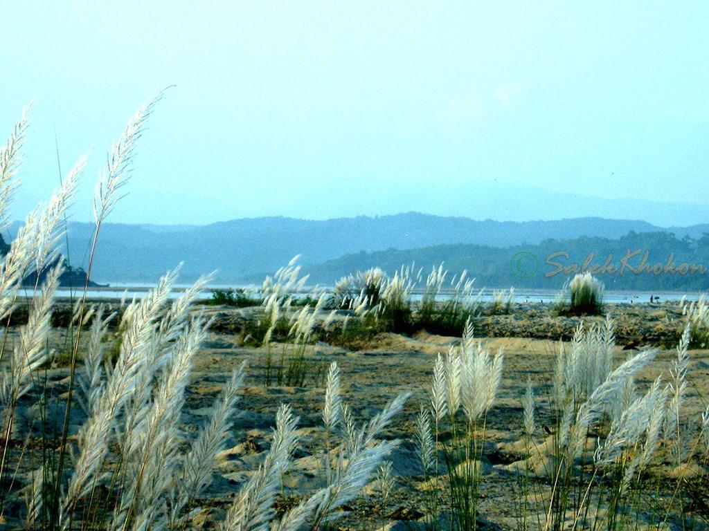 শারদীয় সোমেশ্বরী