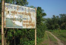 Photo of পাখিরক্ষা কমিটি হোক গ্রামে গ্রামে